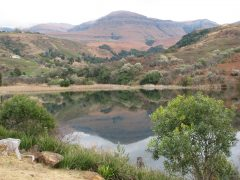 Drakensberg Sun's commitment to conservation