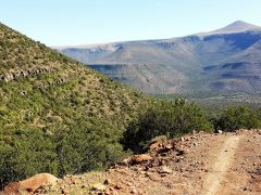 Mount Camdeboo, in the glorious Great Karoo