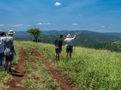 Zululand Conservation Experience