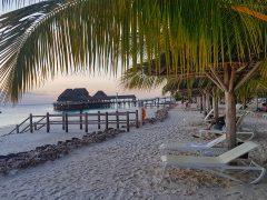 A fleeting visit to Zanzibar