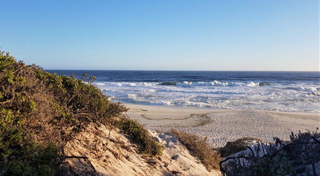West Coast Yzerfontein beach