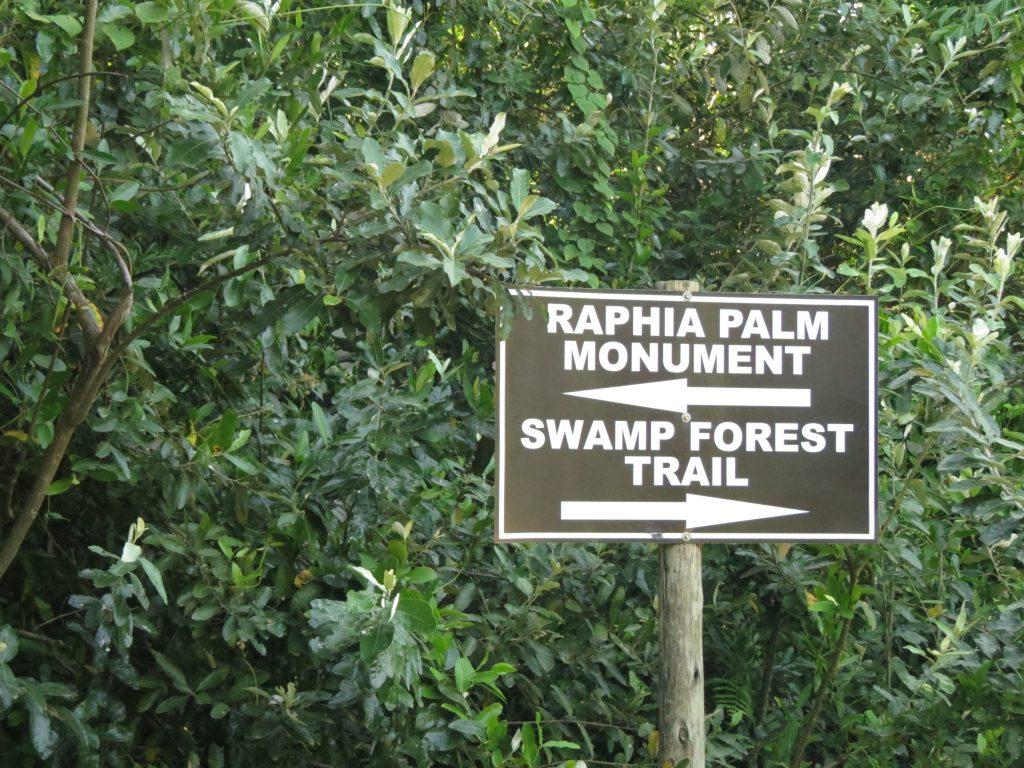 Hiking options in Mtunzini
