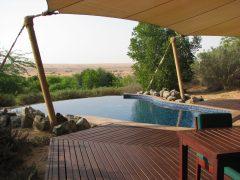 Al Maha, an oasis in the Arabian Desert