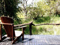 Motswari – at the Heart of a Safari