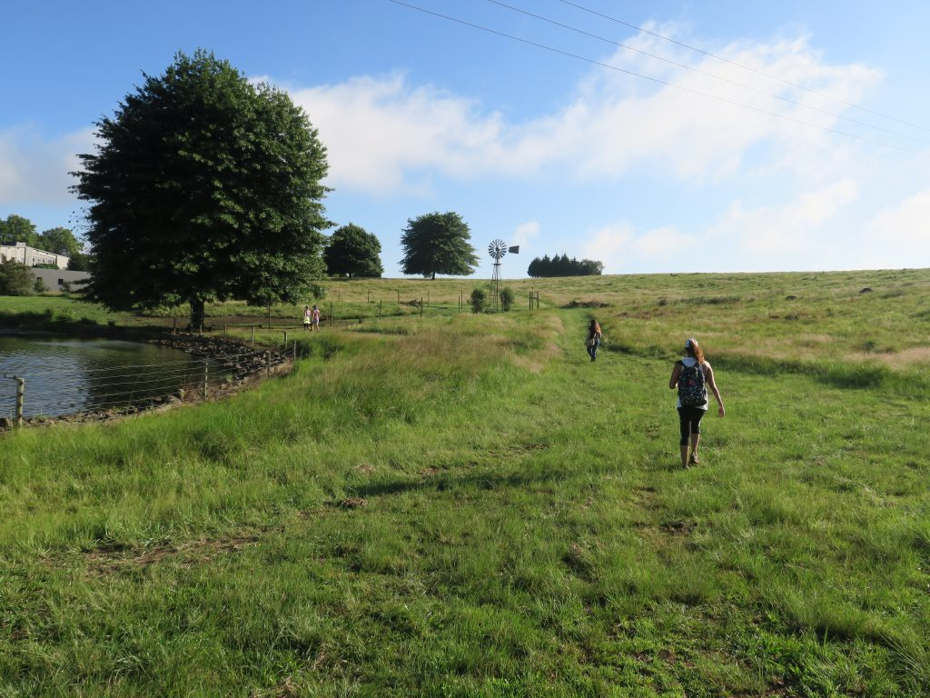 Hiking at Brahman Hills