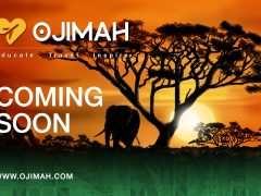 Ojimah – Changing Travel for the Better